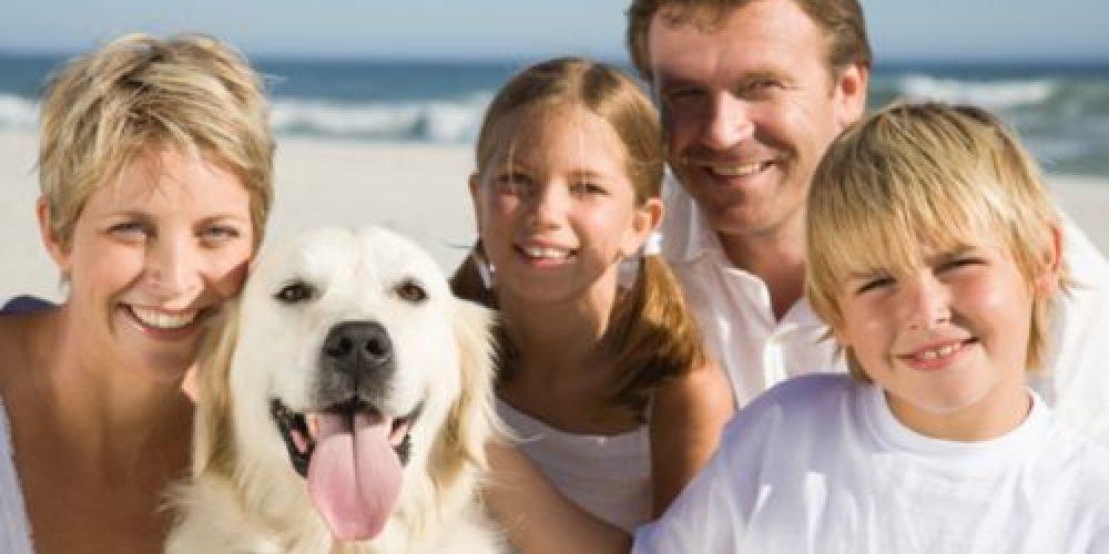 https://www.hotelsedonia.com/wp-content/uploads/2013/07/famiglia-al-mare-con-il-cane-1.jpg